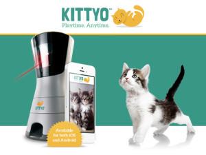 Kittyo1